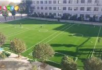 学校足球场草坪
